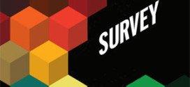 CIO-Survey