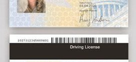 ID-Card-Issuance