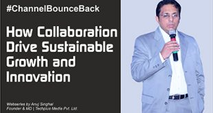 How Collaboration Drive Sustainable Growth and Innovation - 2